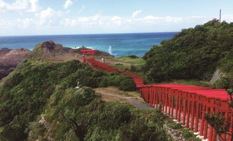 torii (1) (1)